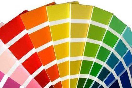 Kleuradvies